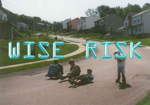 wise-risk